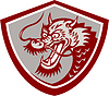 Chinese Red Dragon Head Schild