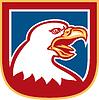 American Bald Eagle Kopf Schild Retro