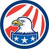 American Bald Eagle Kopf Flaggen-Kreis Retro