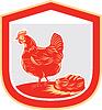 Henne-Huhn Nest Egg Schild Retro