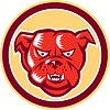 Bulldog Mischling wütend Kopf Kreis Retro
