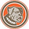 Bulldog Mischling Hund Kopf Maskottchen Kreis