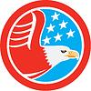 Векторный клипарт: Американский белоголовый орлан Звезды Круг Ретро