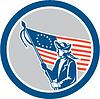 American Patriot Soldat Flaggen-Kreis Retro