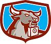 Wütend Bull Leiter Vorhängeschloss Schild Retro