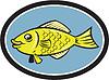 Векторный клипарт: Гурами Рыба Вид сбоку Овальный Мультяшный