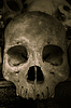 ID 4173565 | Skulls of Killing Fields in Kambodscha, diese | Foto mit hoher Auflösung | CLIPARTO