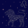 Zodiac sign Leo on starry sky | Stock Vector Graphics