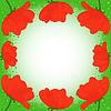 Открытка с несколькими красными маками