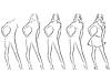 ID 4272953 | Красивая женщина контур в последовательность рисования | Векторный клипарт | CLIPARTO