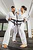 ID 4138327 | Martial arts masters | Foto stockowe wysokiej rozdzielczości | KLIPARTO