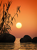 Ocean sunset bamboo and stones | Stock Foto