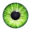 Зеленый текстуры глаз | Иллюстрация