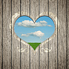 Wooden heart nature | Stock Foto