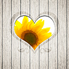 Wooden heart sunflower | Stock Foto