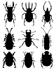 Bugs | Stock Vector Graphics
