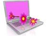 Kosmos kwiat na laptopa | Stock Illustration