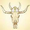 Sketch Longhorn