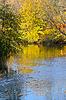 Jesienią krajobraz z odbicia w wodzie drzew | Stock Foto