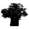 Baobab afrykański | Stock Vector Graphics