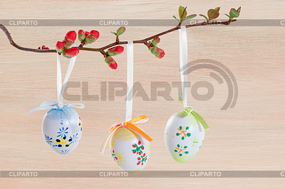 Easter eggs on flowering branch | 높은 해상도 사진 |ID 4246443