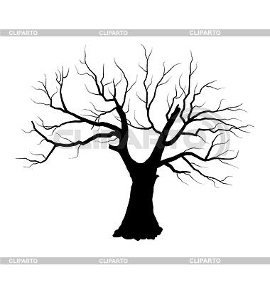Изображения Осеннее Дерево Без Листьев Рисунок / tonpix.ru