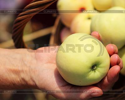 Reifer Apfel in der weiblichen Hand | Foto mit hoher Auflösung |ID 4409859