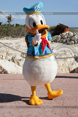 ORLANDO, FL- FEB 5: Donald duck dressed as captain | 높은 해상도 사진 |ID 4299205