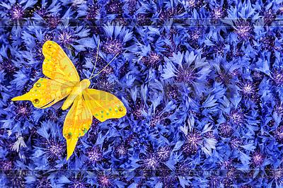 Синий с желтым цветок