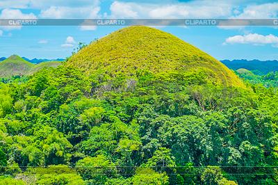 Berühmte Chocolate Hills natürliche Wahrzeichen | Foto mit hoher Auflösung |ID 4289198