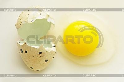 Gebrochene Wachtel-Ei mit Schale | Foto mit hoher Auflösung |ID 4258394
