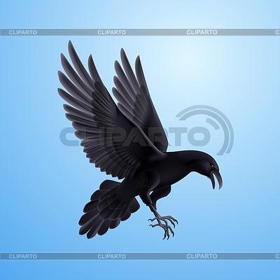 Schwarzer Rabe auf blauem Hintergrund | Illustration mit hoher Auflösung |ID 4325898