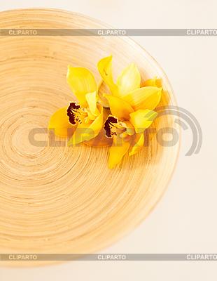 Holzschale mit Orchideenblüten   Foto mit hoher Auflösung  ID 4445294