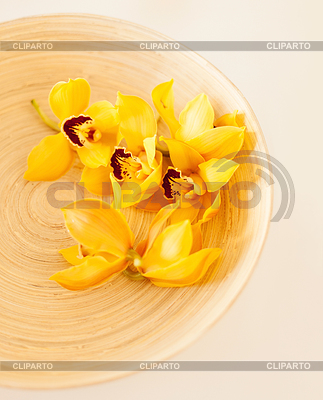 Holzschale mit Orchideenblüten | Foto mit hoher Auflösung |ID 4445357