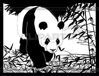 Panda wandern im wald shulbaeva nelli