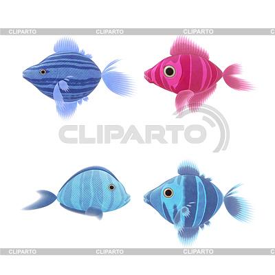 Cztery ryby s | Stockowa ilustracja wysokiej rozdzielczości |ID 4147027