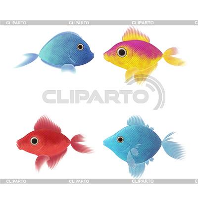 Vier Fische s | Illustration mit hoher Auflösung |ID 4147028